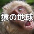 「猿の地球」サポートページ